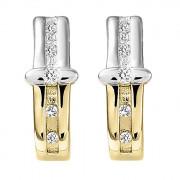 Σκουλαρίκια με Ζιργκόν Χρυσός Κ14 - 08296