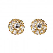 Σκουλαρίκια με Ζιργκόν Χρυσός Κ14 - 09098